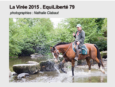 Pave lien viree 2015 nath